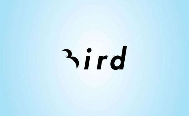 clever-logo-bird