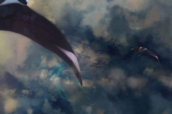 skyslide-2021-detail-2