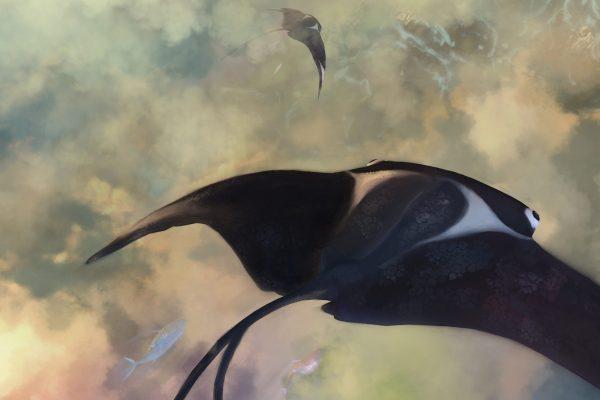 skyslide-2021-detail